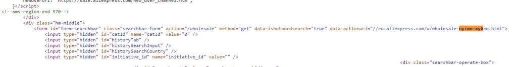 Участок кода с оскорблением
