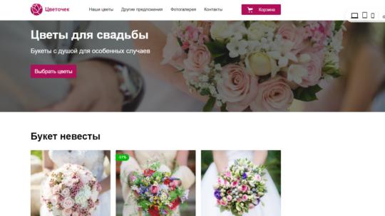 Яндекс Директ с сайтом